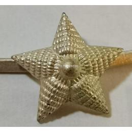 Hvězda na nárameníky.13mm